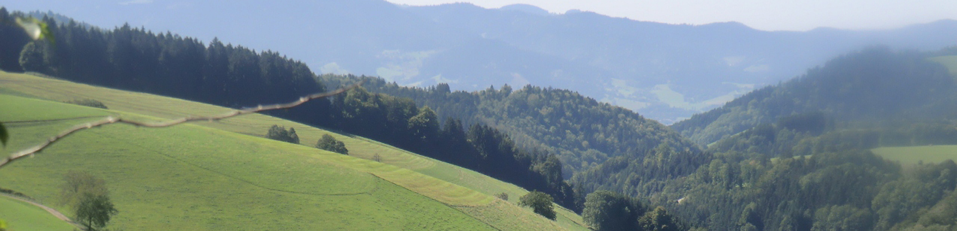Urlaub in Bernau im Schwarzwald